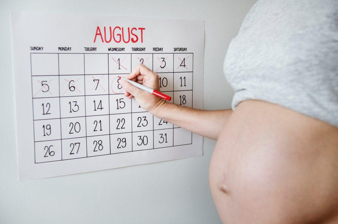 calendrier de datation